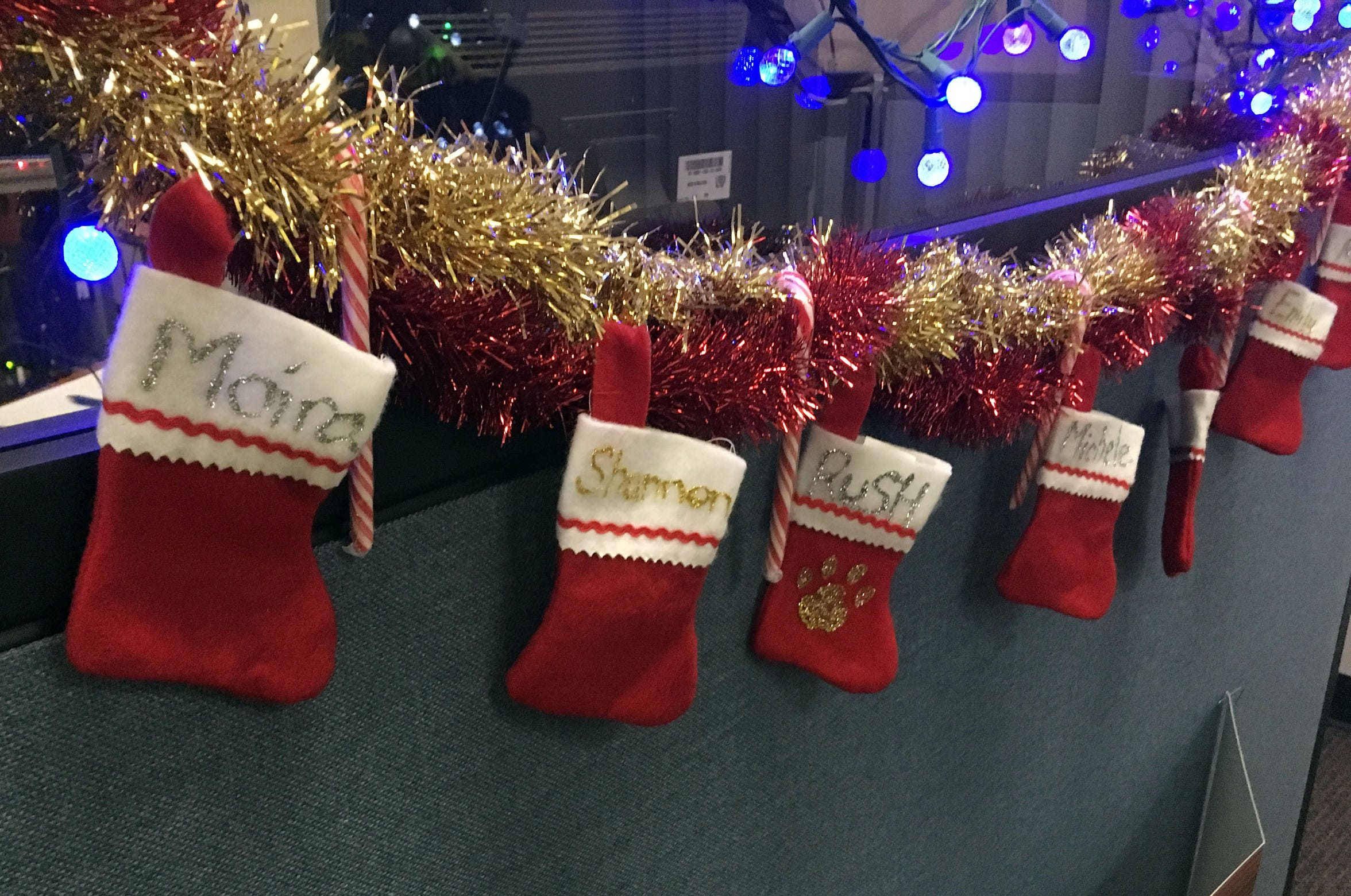 All the South Burlington police dispatchers hung stockings in the dispatch office before Christmas. K9 Rush also had his own stocking, as shown in a photo on Dec. 6, 2018.