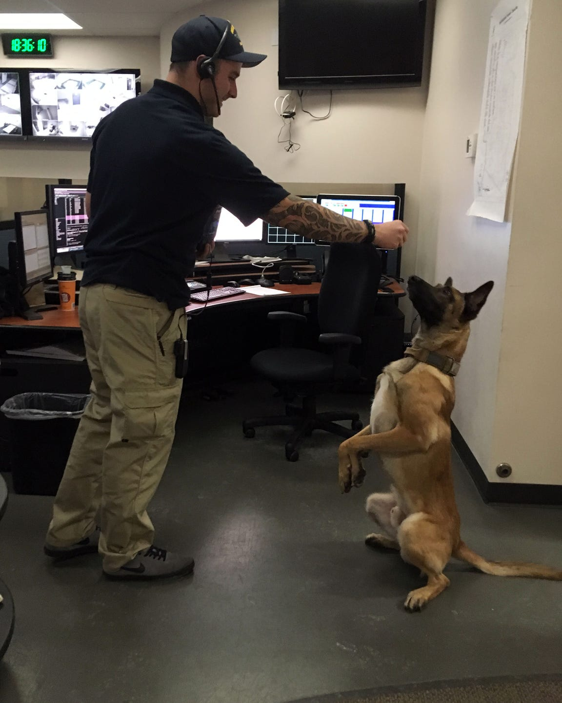 South Burlington Dispatcher Mike Goslin has K9 Rush stand on his hind legs for a treat on Dec. 6, 2018.