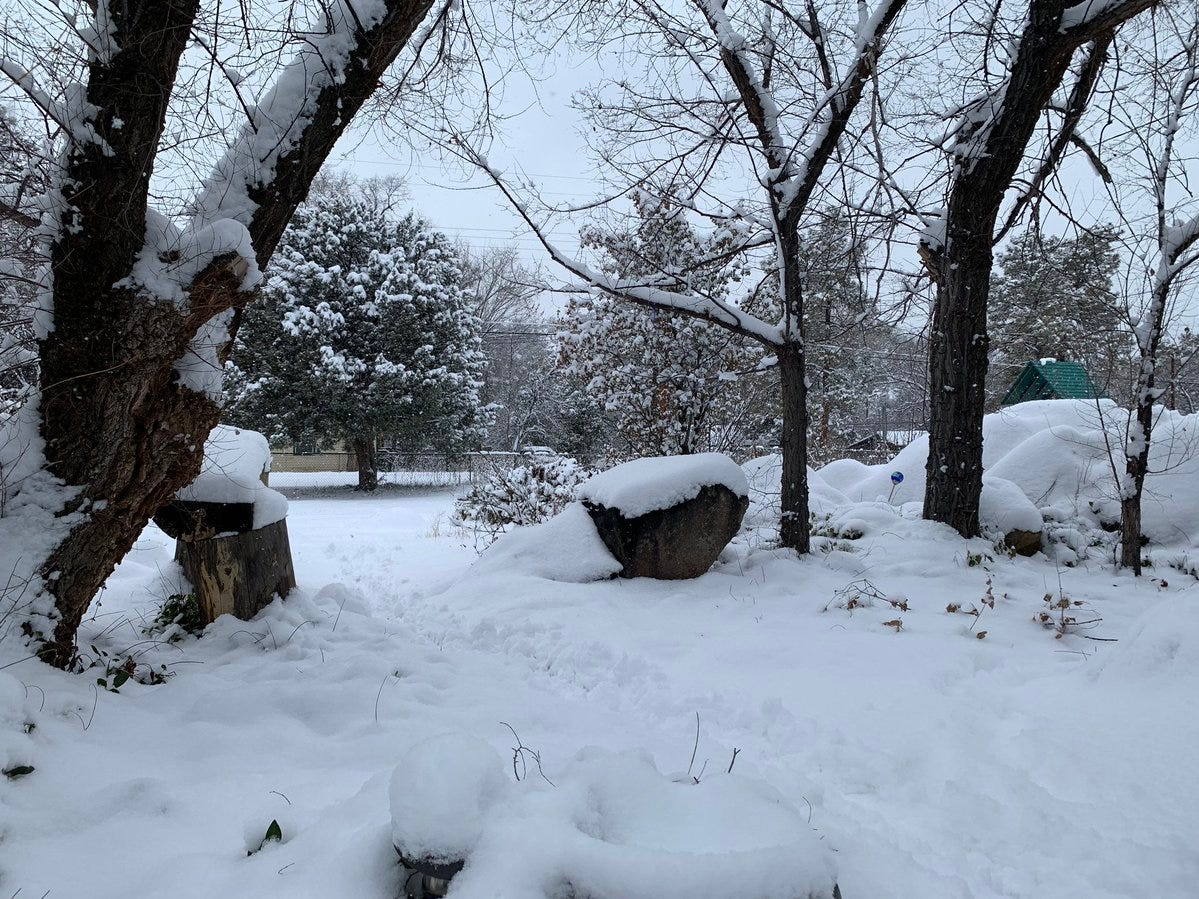 Luke Gray shared this photo of the snow falling in northern Arizona on Dec. 31, 2018