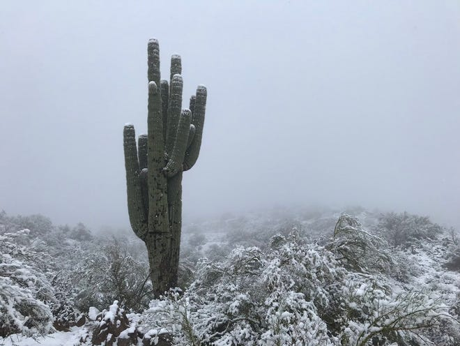 John Sirlin shared this photo of snow falling north of Phoenix on Dec. 31, 2018.