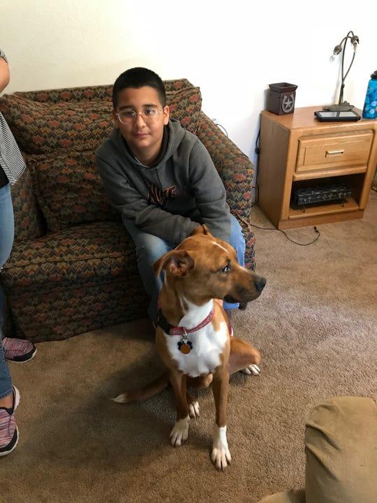 Jose Angel Tobias, 11, calms Bill Boy on Monday, Dec. 31, 2018.