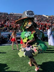 The Stanford mascot sported a Whataburger cap with a Beto-Tree 2020  pin.