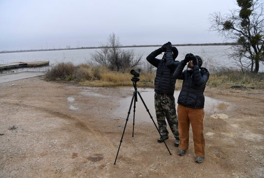 """Jay and Amy Packer try to identify birds flying overhead at Kirby Lake on Tuesday. The Abilene birder launched his """"Big Year,"""" during which he intends to count as many species in Taylor County as possible."""