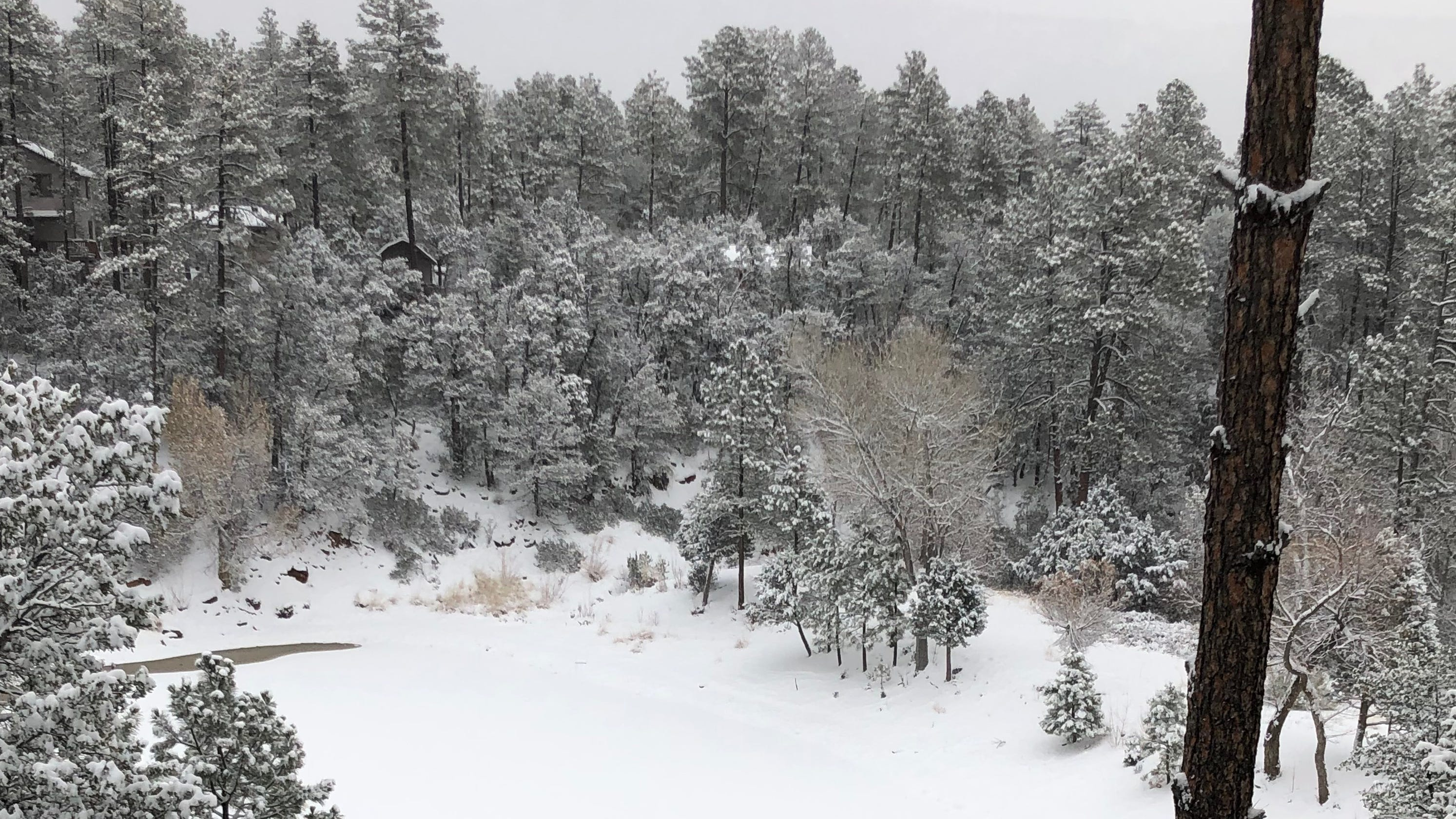Another winter blast expected in Arizona high country