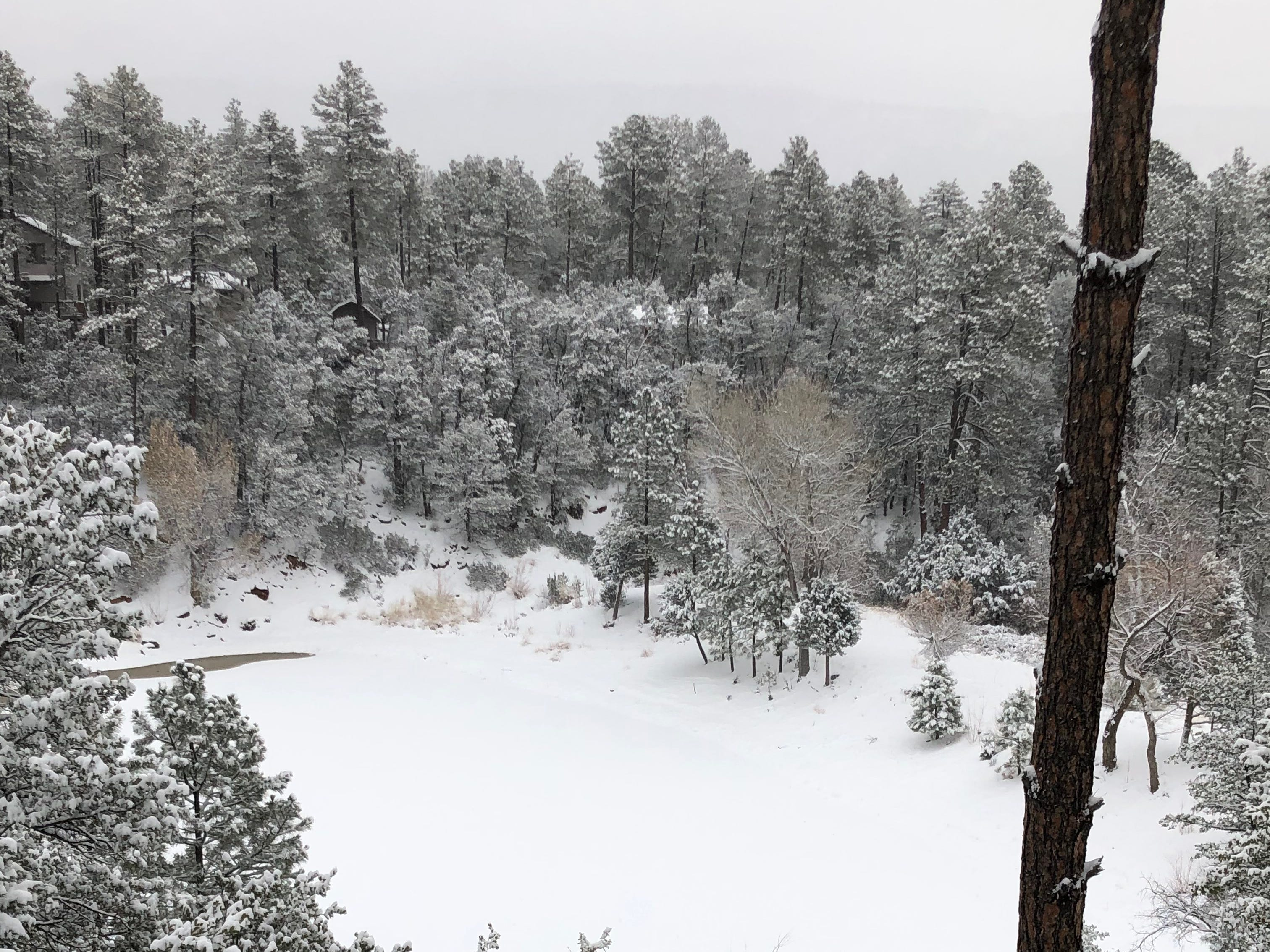 Snowfall blanketed northern Arizona, including Strawberry, on Dec. 31, 2018.
