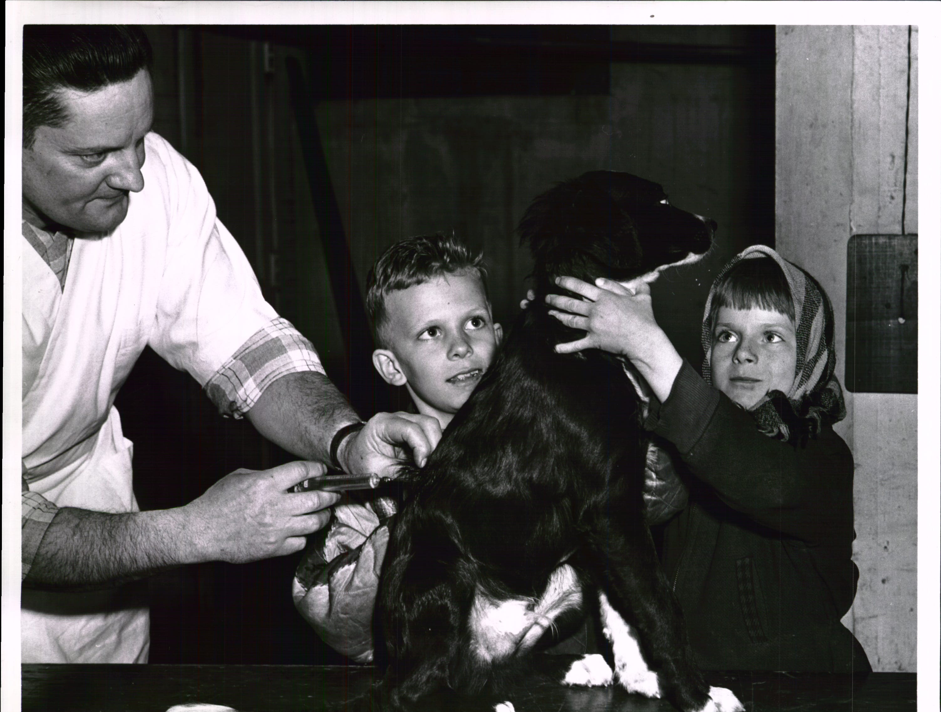 An unidentified dog gets a rabies shot from an unidentified man while unidentified children look on.