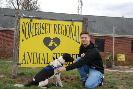 Photo 3 Rvcc Service Learning Student Andrew Arce Of Raritan Helps With A Dog As He Volunteers At The Somerset Regional Animal Shelter