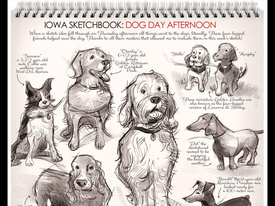 From Mark Marturello: When a sketch idea fell through, all things went to the dogs. Literally. These four-legged friends helped save the day. Thanks to all their masters that allowed me to include them in this week's sketch!