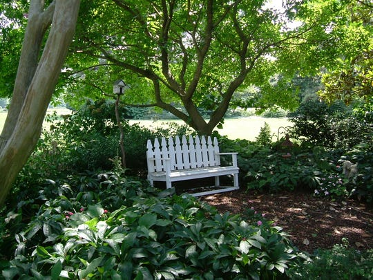 Turn a shady spot under trees into a destination with a mulched path to a garden bench. Mulch looks attractive, contributes to healthy soil and helps control weeds. Shade-loving hellebores are also thriving in the dappled light under these trees.