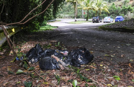 Trash bags of decomposing material line the driveway of the Sella Bay Overlook parking lot on Wednesday, Jan. 2, 2019.