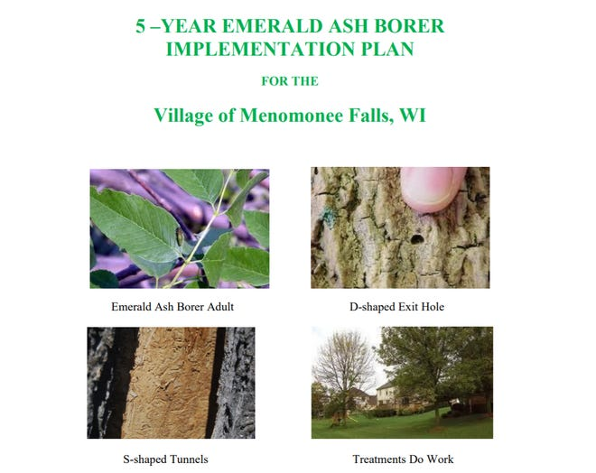 Wachtel Tree Science, which services southeastern Wisconsin, worked with Menomonee Falls to create a five-year tree management plan. It will be executed with the help of state grant funding.