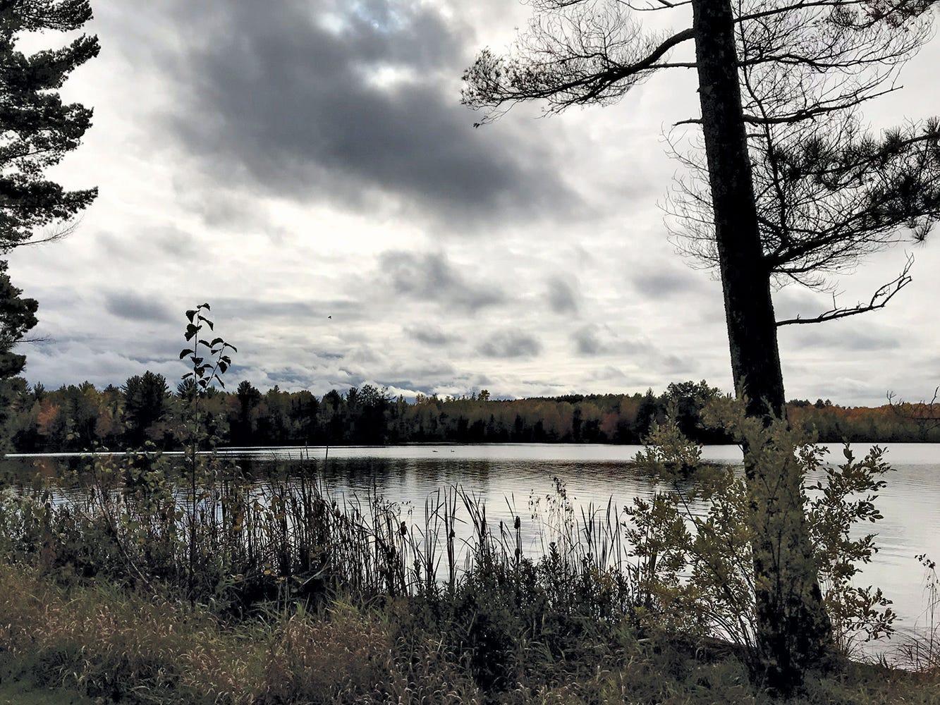Newman Lake