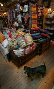 A look inside Pangaea, featuring the store dog, in Hillsboro Village in May 2009.