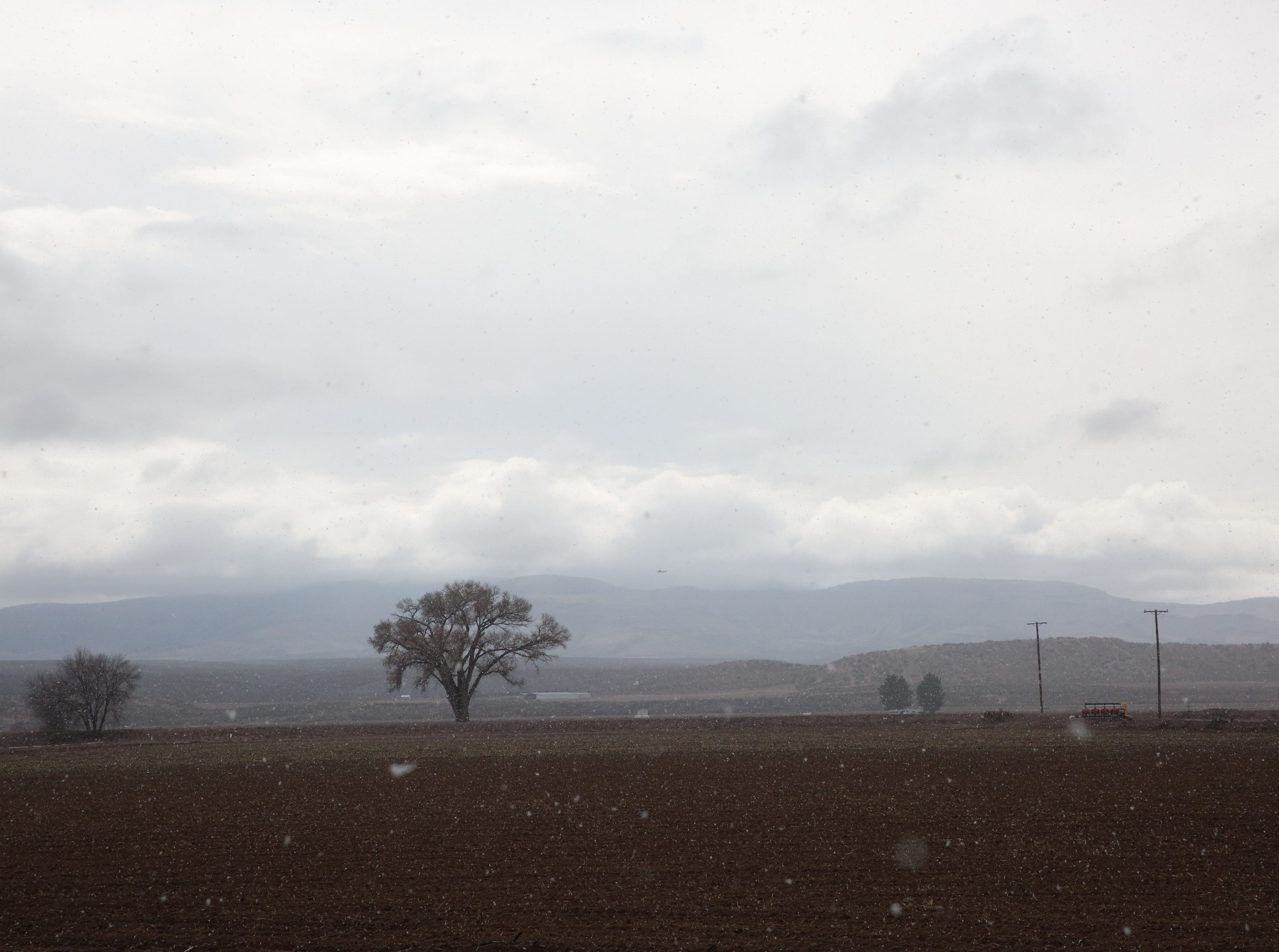 Light snow falls on an empty field on Wednesday, Jan. 2, 2019 just north of Hatch, New Mexico.