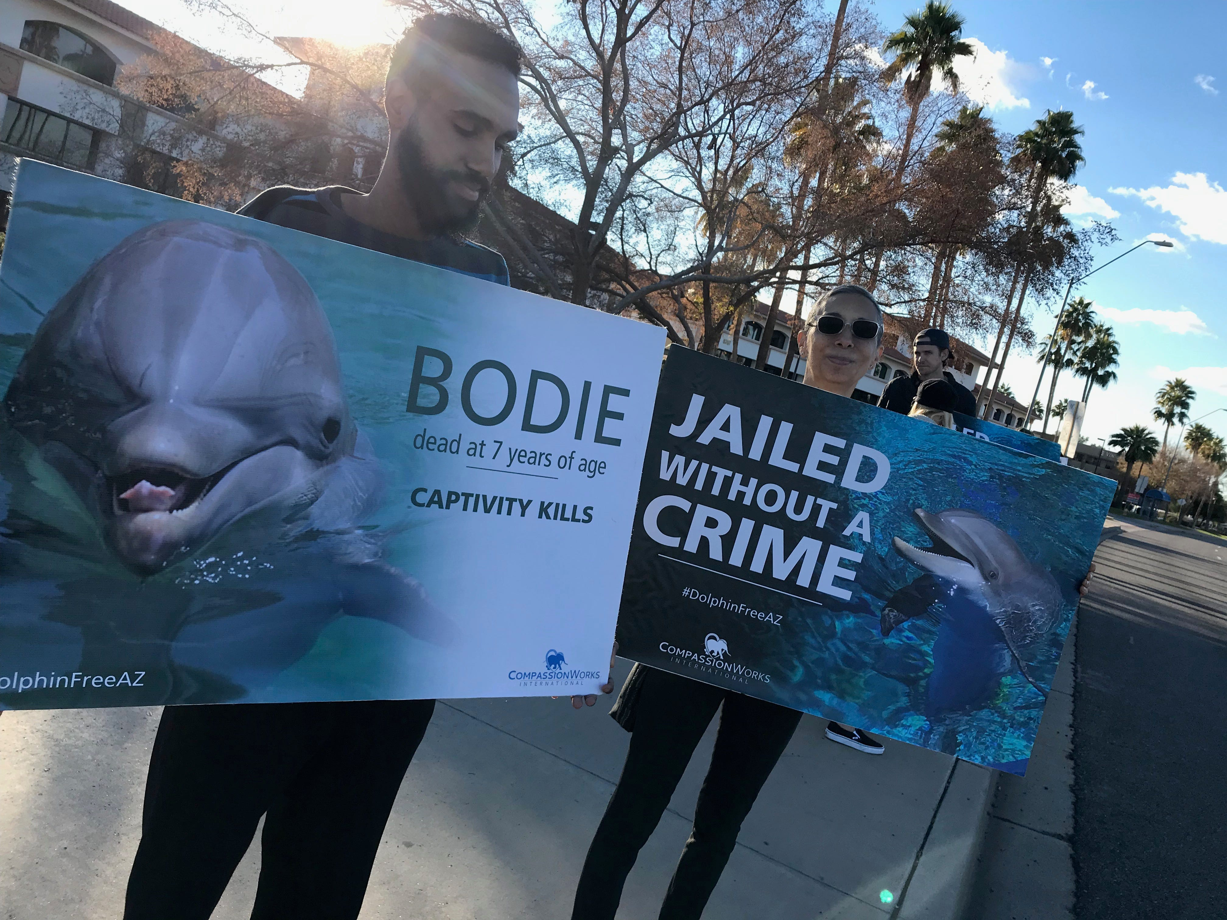 "Protesters hold signs that read ""jailed without a crime"" and ""Bodie dead at 7 years of age Captivity Kills.""  On Dec. 30 the third of eight dolphins at Dolphinaris Arizona died since opening."