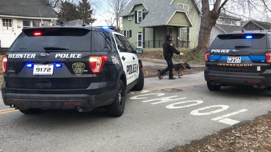 Monroe County Sheriff's Office K-9 unit on scene of a reported home invasion on Point Pleasant Road in Irondequoit Tuesday.