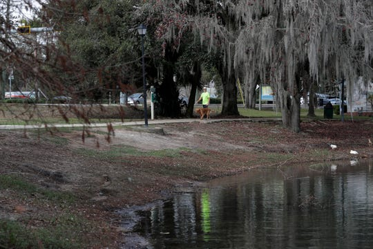 A man walks his dog around Lake Ella as temperatures reached about 75 degrees midday in Tallahassee Wednesday, Jan. 2, 2019.