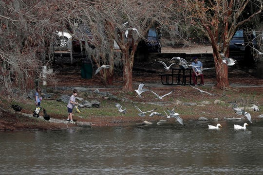 Children feed popcorn to birds at Lake Ella Park as temperatures reached about 75 degrees in Tallahassee midday Wednesday, January 2, 2019.
