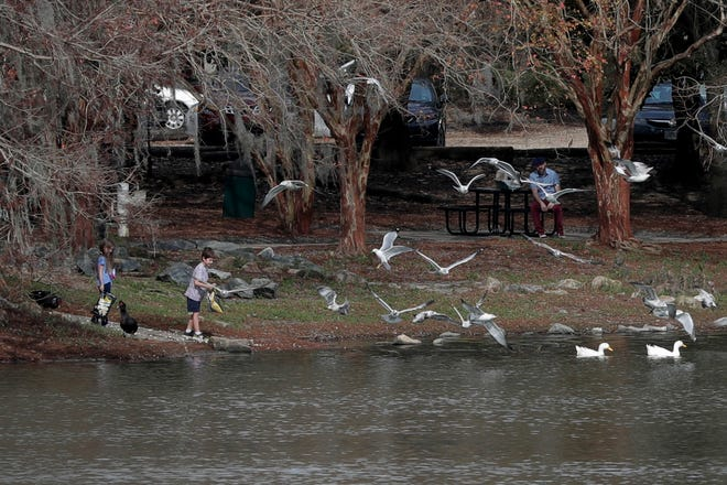 Children feed popcorn to birds at Lake Ella Park, the staging area for Saturday's Adopt-A-Shore cleanup event.