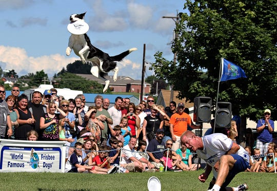 The world famous Frisbee dog Zorra will perform at the Bark in the Park festival set for Jan. 12 in Riverside Park in Vero Beach.