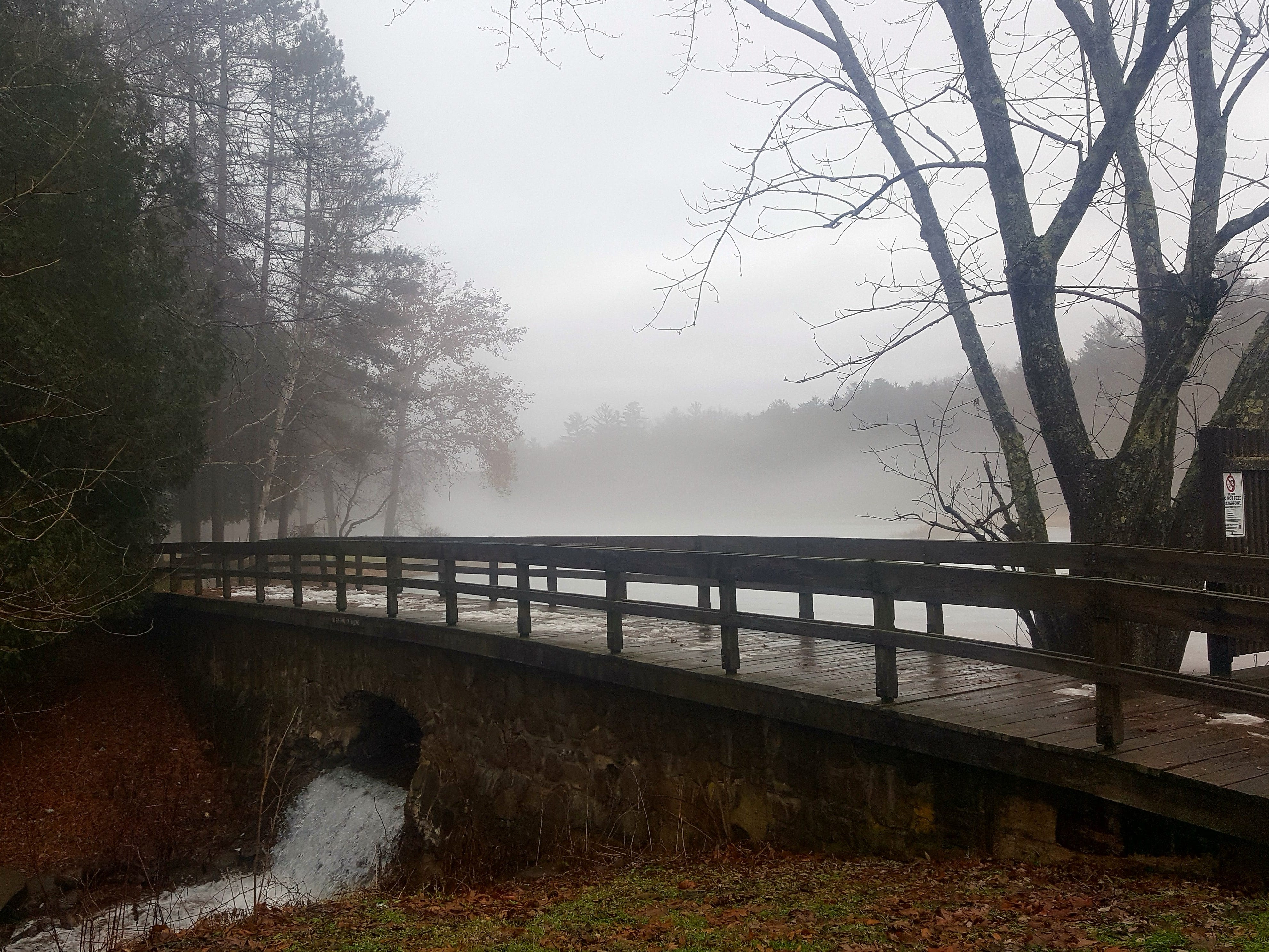 Chenango Valley State Park.