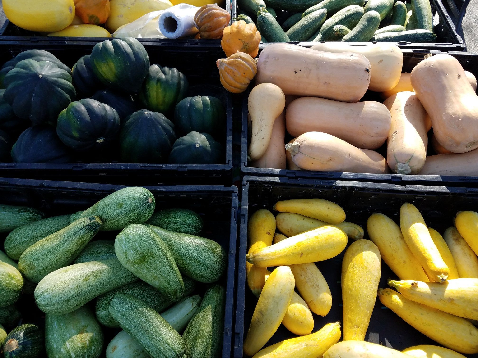 Shoppers can find a variety of seasonal produce at the Corpus Christi Southside Farmers' Market. It is open Saturdays from 9 a.m. to noon at 5800 Everhart Road.