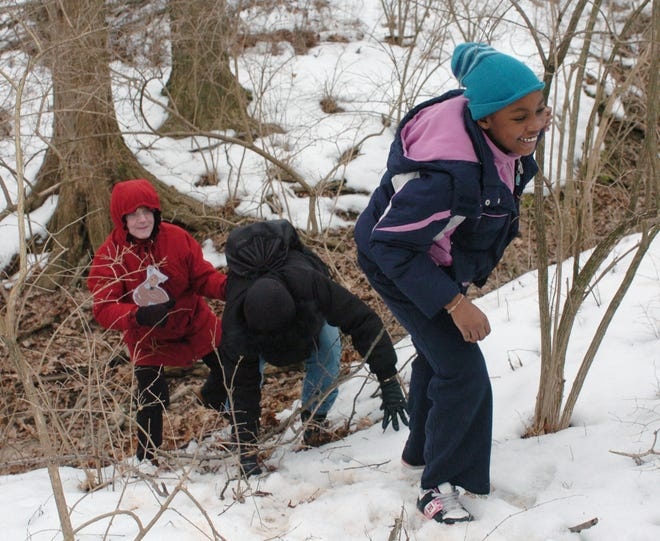 Even if the snow does fall this winter, a hike is a great way to enjoy the fresh winter air.