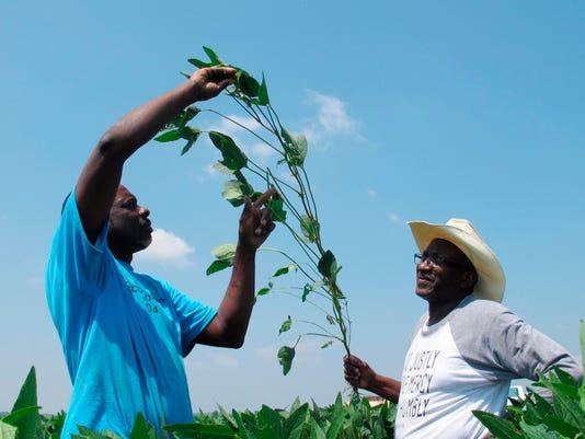 Mississippi farmers Stine lawsuit