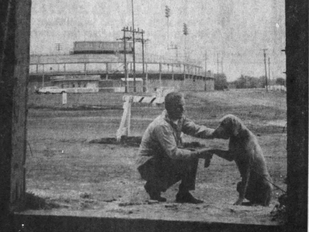 "Des Moines city humane officer Roger Gustafson ""shakes hands"" with one of the first tenants of the city's new temporary dog pound near Sec Taylor Stadium (background). The dog facility is located adjacent to the stadium parking lot in an old Park Department building once used to store bleachers. The city has space for eight dogs but plans to make room for at least 50 more."
