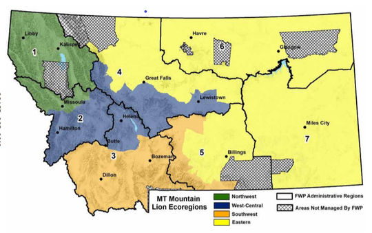 Montana Fish, Wildlife and Parks is proposing to break up mountain lion management into four ecoregions because lions function in big landscapes.