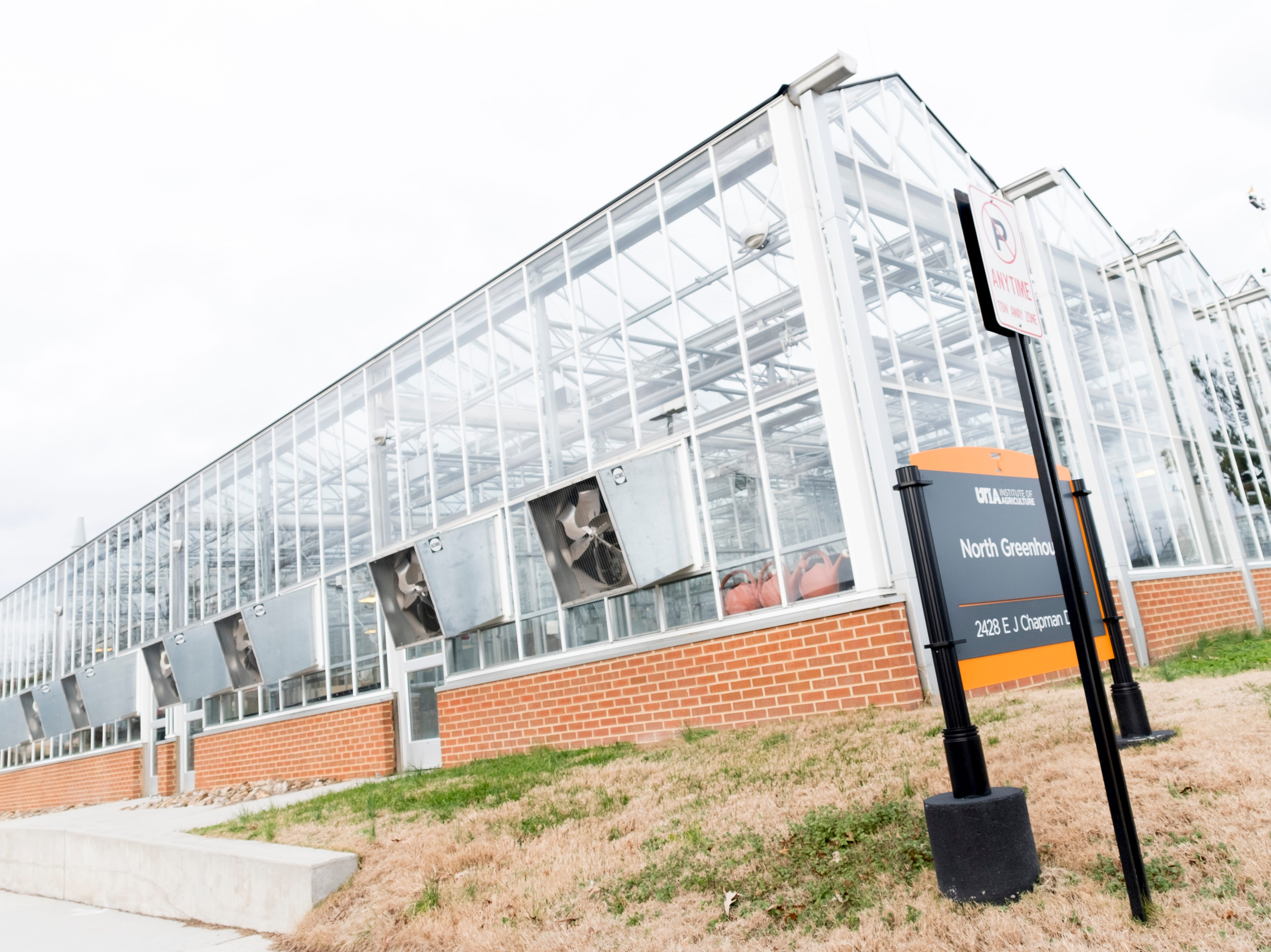 North Greenhouse on the University of Tennessee campus in Knoxville, Tennessee on Tuesday, January 1, 2019.