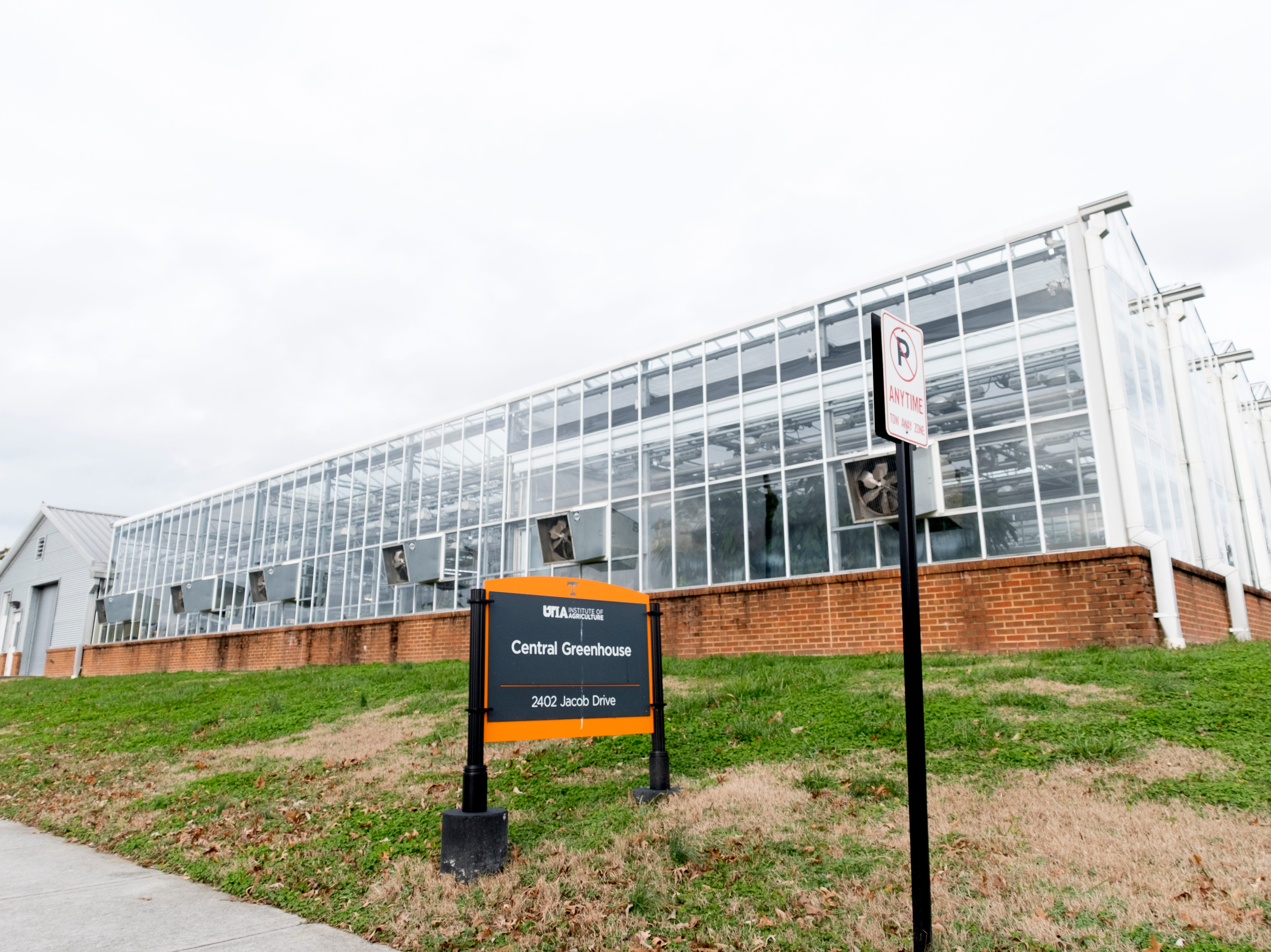 Central Greenhouse on the University of Tennessee campus in Knoxville, Tennessee on Tuesday, January 1, 2019.
