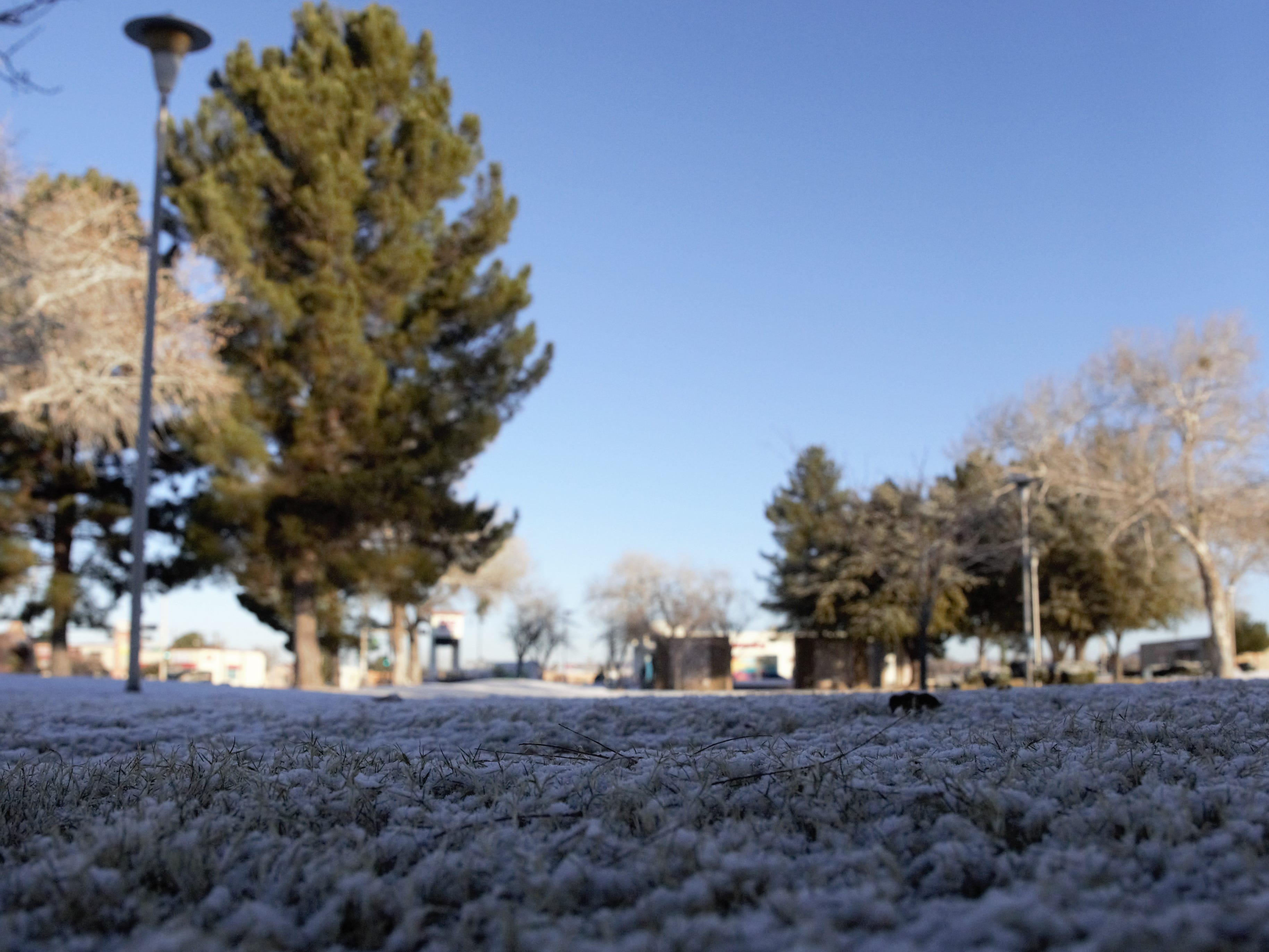 Las Crucens awoke to a clear sky the morning of Thursday, Jan. 3, 2019, after the area received a dusting of snow the previous night. Remnants of the snowfall are seen at Albert Johnson Park, located at North Main Street and Picacho Avenue.