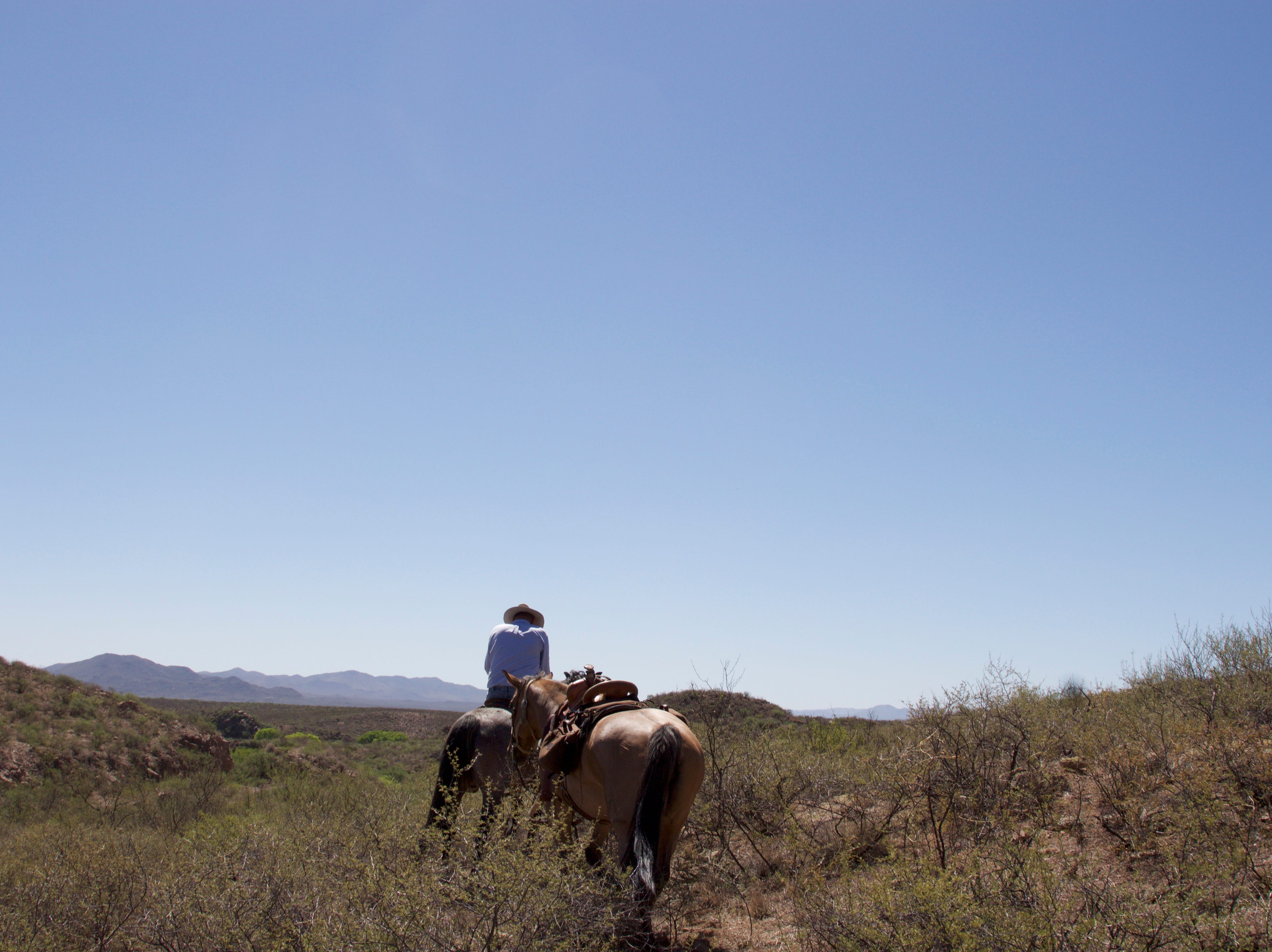 On June 23, 2018, Mike Hayhurst guides Holly Richter's horse while Richter maps water in a portion of  the Babocomari River that is unreachable by horse.