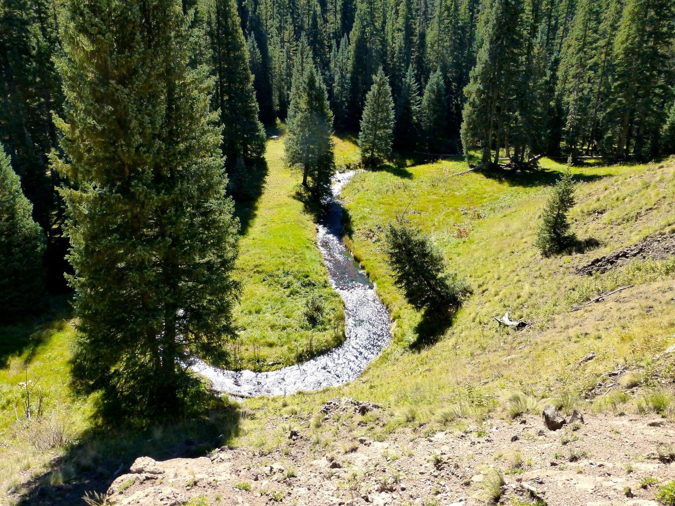 El pequeño río Colorado comienza en lo alto de las laderas del monte Baldy.