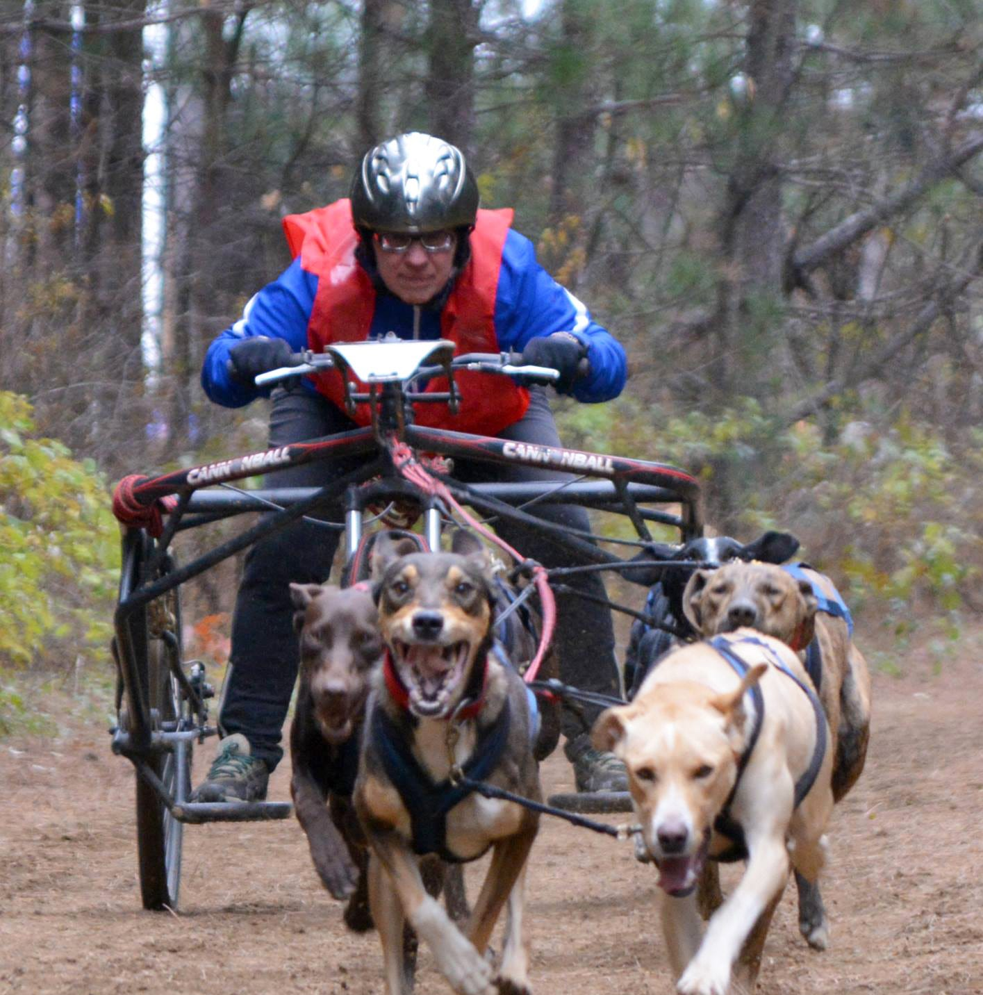 A Wisconsin dog sled racing champion almost died in a crash. Then her daughters took over.