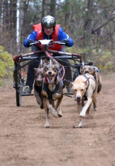 Jan Bootz-Dittmar is shown here racing with a dry-land rig, a wheeled vehicle that allows sled-dog racers to compete when there is no snow.