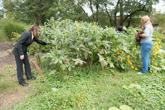 In this undated photo Brandi Gillen, left, Jacque Jones and Debbie Sisson, right, gather vegetables at the Woodrow Project recovery house and farm in North Royalton, Ohio. The North Royalton recovery house and farm started in February as a way to provide stability and training to women in recovery, Woodrow Project executive director Erin Helms said.