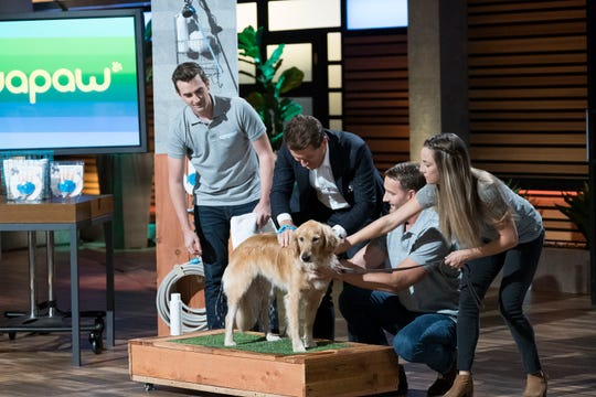 "Tom Zipprian and Daniel Lentz  demonstrate Aquapaw, a tool for bathing pets, with help from Robert Herjavec (center) on ABC's ""Shark Tank."""
