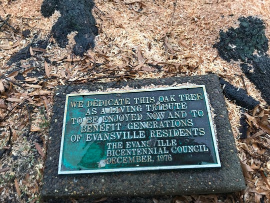 The plaque remains after the centennial oak tree was cut down.