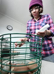 Claire O'Brien cleans eggs she collected at her family's sustainable Sunnyside Farm in Newberry Township Friday, Jan. 4, 2019. Bill Kalina photo