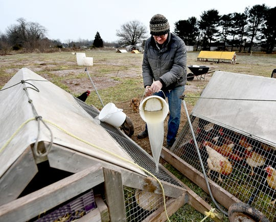 Homer Walden tends to portable chicken pens at his family's sustainable Sunnyside Farm in Newberry Township Friday, Jan. 4, 2019. He designed the pens which allow the egg layers to feed on clean, fresh grass. Bill Kalina photo