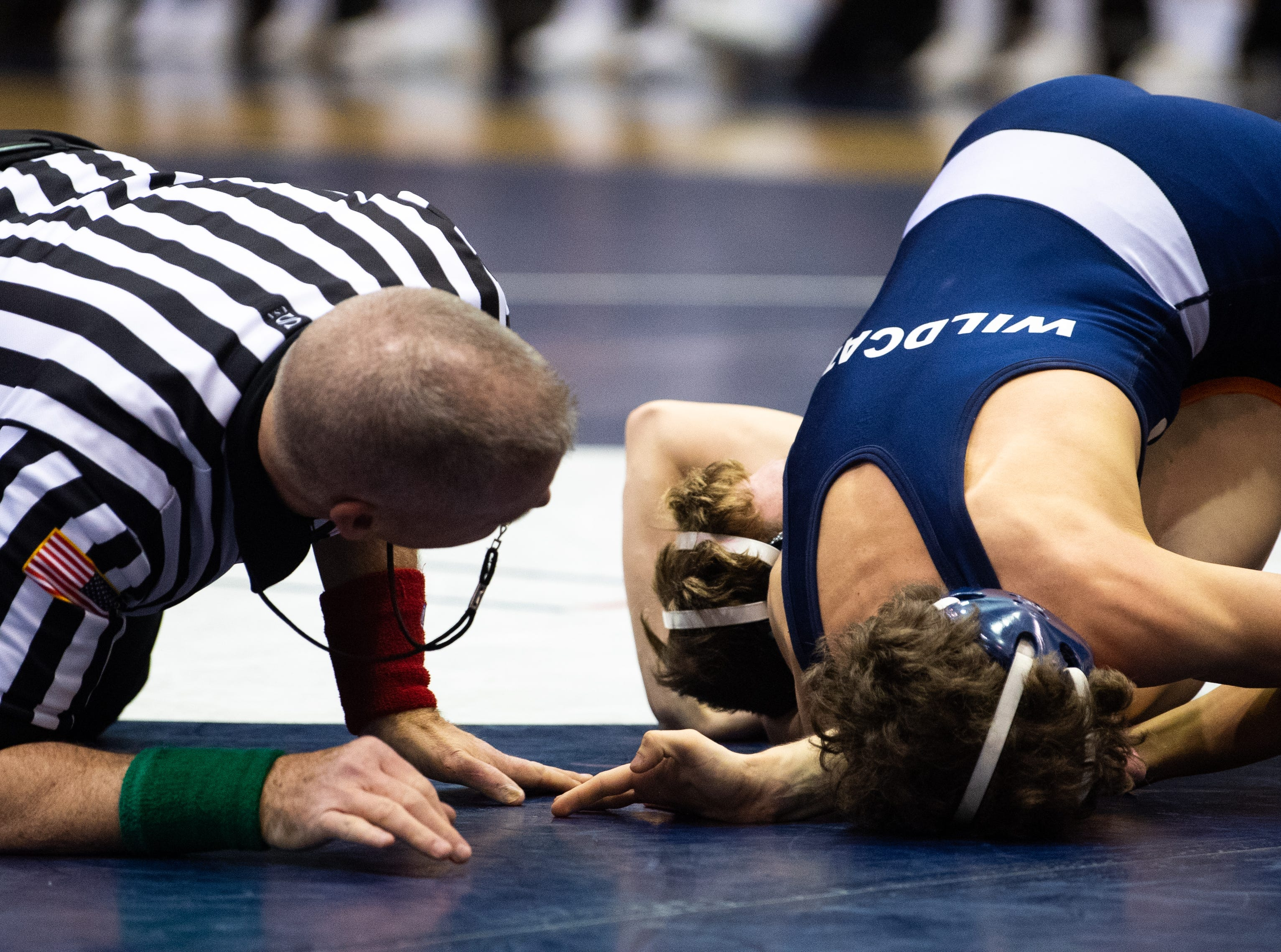 The ref watches as Dallastown's Carter MacDonald gains the upper hand over Isaak Gray of Central York during the wrestling dual meet, Thursday, January 3, 2019. The Wildcats defeated the Panthers 62-18.