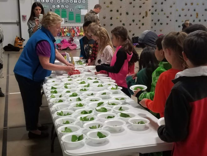 Master Gardener volunteer Debbie Vinson helps 3rd graders at Glenmore Elementary in San Angelo prepare salad bowls with vegetables from their school garden.