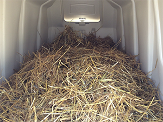 Provide calves with properly fitted calf jackets, deep straw bedding, and protection from wind, snow, and other inclement weather.