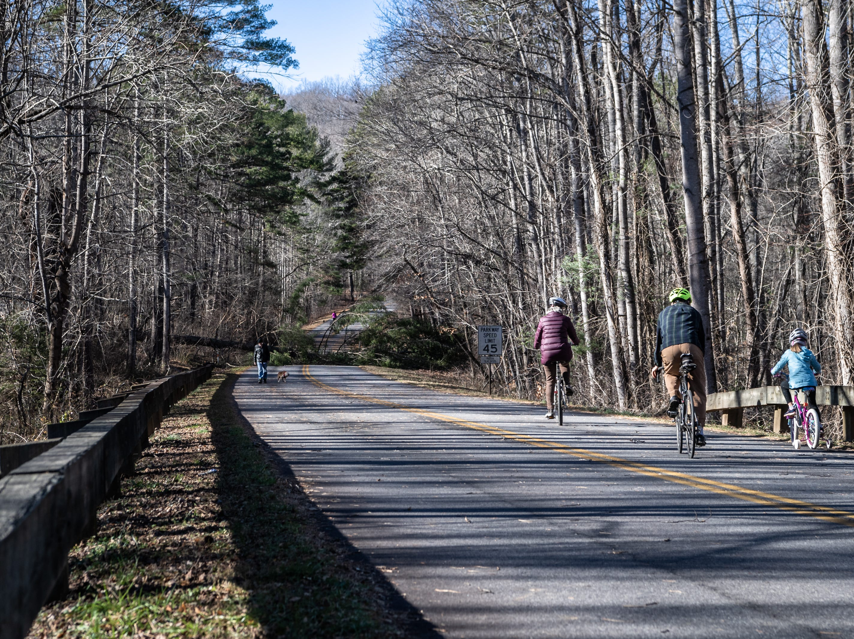 A family visiting the Blue Ridge Parkway ride their bicycles past the gate on a section of the Parkway just north of the Folk Art Center where a fallen tree lies, Jan. 5, 2019. Much of the Parkway has been closed due to the government shut down and maintenance such as clearing debris is not possible.