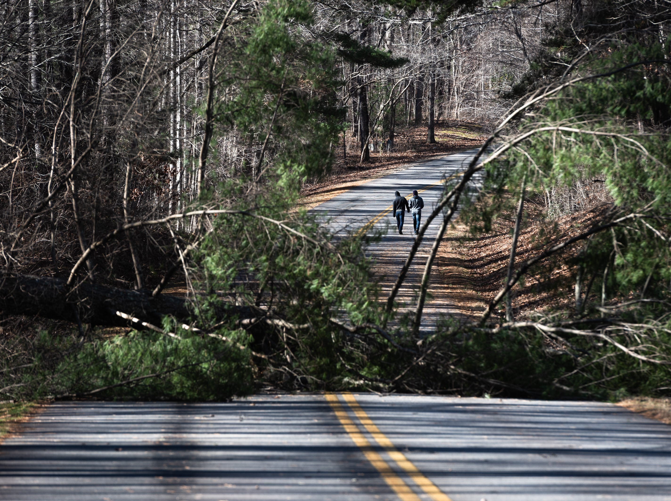 A couple visitors to the Blue Ridge Parkway walk past a fallen tree just north of the Folk Art Center Jan. 5, 2018. Much of the Parkway has been closed due to the government shut down and maintenance such as clearing debris is not possible.