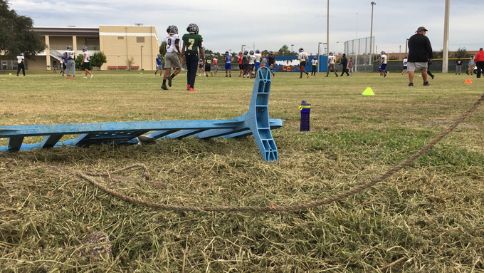 A burrowing owl, lower left, keeps watch of football players practicing for the Rotary South All-Star Classic from his home in the middle of the Cape Coral High practice field on Nov. 29, 2018.