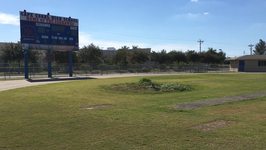 A burrowing owl occupies a nest behind the south end zone inside Cape Coral High School's football stadium. The owl was one of at least three living in the school's athletics fields in fall 2018.