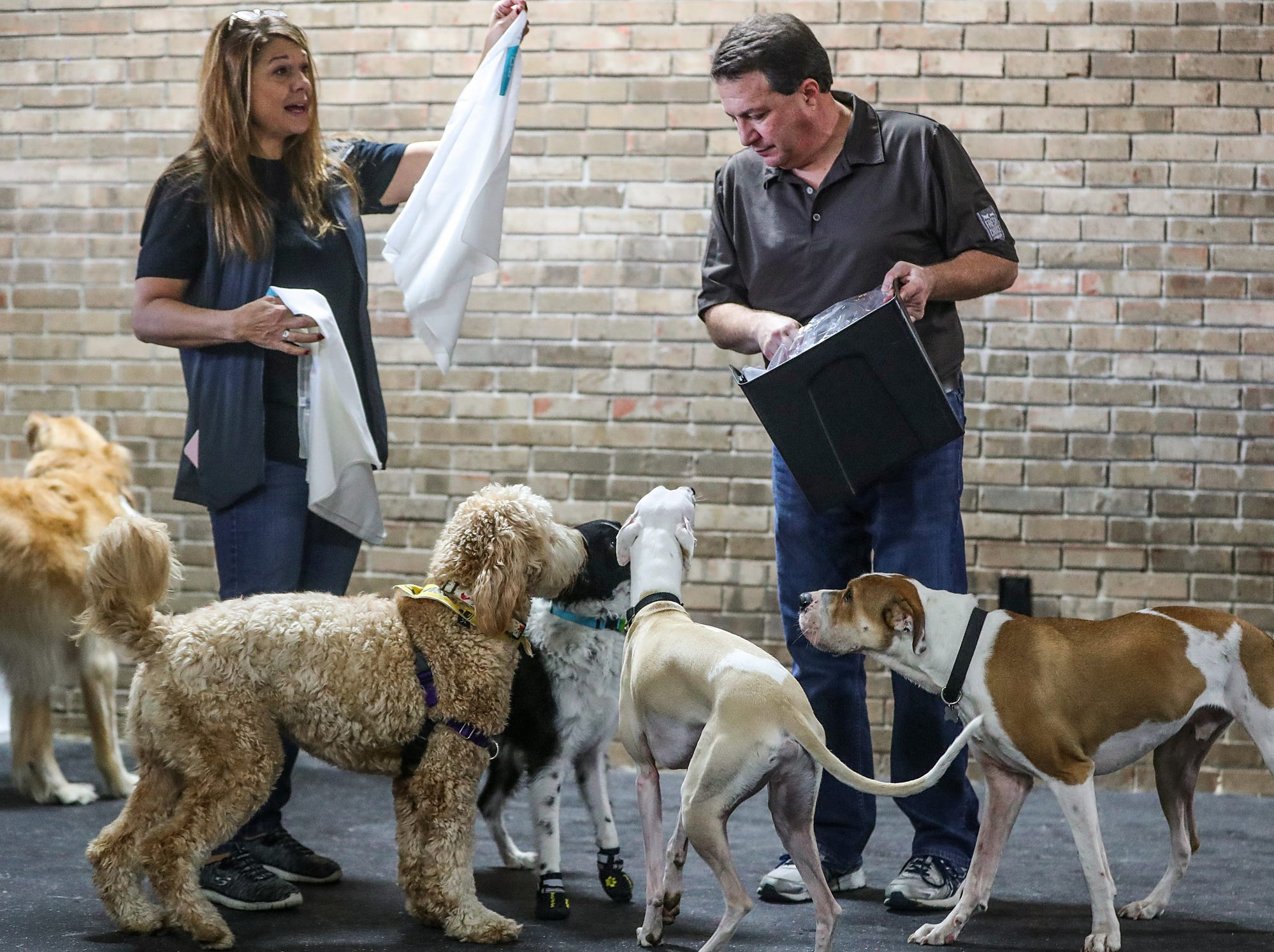 From left, Tracy Pflum hands out bandanas and Steve Cline hands out treats during the grand opening of Indy's Indoor Bark Park in Indianapolis, Saturday, Jan, 5, 2019. The large indoor space offers owners a place to exercise their dogs regardless of the weather. Membership options include single-day, multi-day and annual passes.